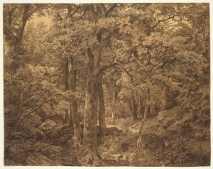 Brooklyn_Museum_-_Forest_Interior_-_William_Trost_Richards