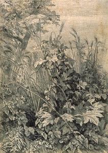 TrostRichasrds-Leaves