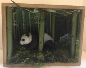 Panda Diorama by Xin Xu