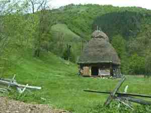 Romania Transylvania grass-thatched barn
