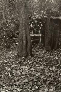 sudek_from-cycle-a-walk-in-the-magic-garden